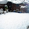 Snowgallery19