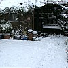 Snowgallery22