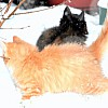 Rocket and Catherine, Jan 2010